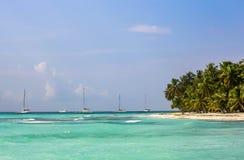 InselPalme-Seeyachten lizenzfreie stockfotos