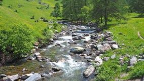 Insenatura alle alpi italiane Acqua pulita e incontaminata Fotografie Stock Libere da Diritti