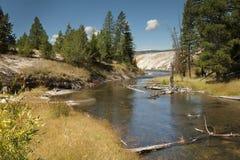 Insenatura attraverso Yellowstone Fotografia Stock Libera da Diritti