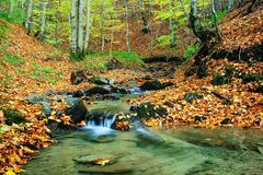 Insenatura in autunno Fotografia Stock