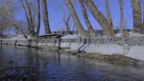 Insenatura calma sulla sponda del fiume stock footage