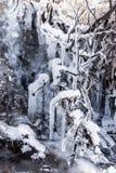 Insenatura congelata Fotografie Stock Libere da Diritti