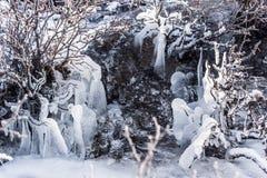Insenatura congelata Immagine Stock Libera da Diritti