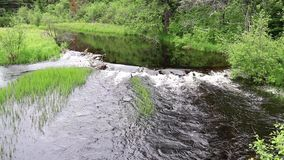 Insenatura del deposito del bacino nel parco del Algonquin stock footage
