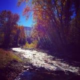 Insenatura del Montana fotografie stock libere da diritti