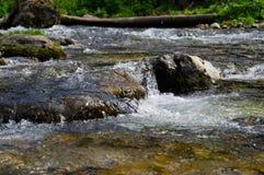 Insenatura della montagna Parco narodny di Tatransky Vysoke tatry poland fotografie stock