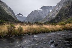 Insenatura della scimmia, Nuova Zelanda Fotografie Stock Libere da Diritti
