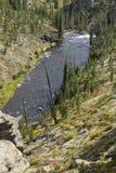 Insenatura della torre con le rocce in priorità alta, parco nazionale di Yellowstone, Fotografie Stock Libere da Diritti