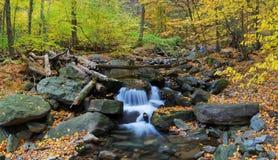 Insenatura di autunno Fotografie Stock