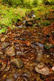 Insenatura di autunno con le pietre Fotografia Stock Libera da Diritti