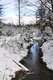 Insenatura di inverno Fotografia Stock Libera da Diritti