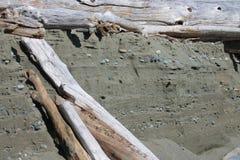 Insenatura di Lostshoe del legname galleggiante della mina di oro di erosione Fotografia Stock Libera da Diritti
