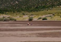 Insenatura di Medano alle grandi dune di sabbia fotografia stock libera da diritti