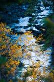 Insenatura di Sedona in autunno fotografie stock