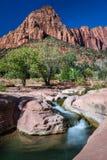 Insenatura di Verkin della La - Zion National Park immagine stock