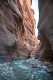 Insenatura di Wadi Hasa in Giordania Fotografie Stock