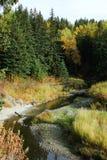 Insenatura di Whitemud in autunno immagini stock libere da diritti