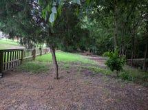 Insenatura e legno del cortile Immagine Stock Libera da Diritti
