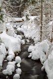 Insenatura in inverno Immagine Stock