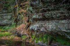 Insenatura laterale della scogliera Fotografia Stock