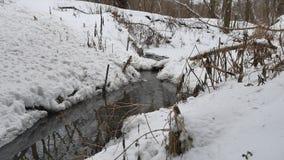 Insenatura nel legno in acqua corrente della natura di inverno, piccolo fiume nel paesaggio della neve Immagine Stock