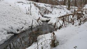 Insenatura nel legno in acqua corrente della natura di inverno, piccolo fiume nel paesaggio della neve Fotografie Stock Libere da Diritti