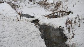 Insenatura nel legno in acqua corrente di inverno della natura, piccolo fiume nel paesaggio della neve Fotografia Stock