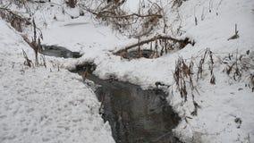 Insenatura nel legno in acqua corrente di inverno della natura, piccolo fiume nel paesaggio della neve Fotografia Stock Libera da Diritti