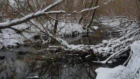 Insenatura nell'acqua corrente del paesaggio di inverno della natura di legni, piccolo fiume nella neve Fotografia Stock Libera da Diritti