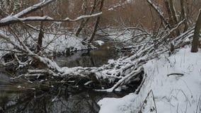 Insenatura nell'acqua corrente del paesaggio di inverno della natura di legni, piccolo fiume nella neve Immagini Stock Libere da Diritti