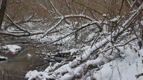 Insenatura nell'acqua corrente di inverno del paesaggio della natura di legni, piccolo fiume nella neve Fotografie Stock
