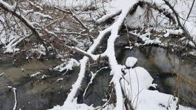 Insenatura nell'acqua corrente di inverno del paesaggio della natura di legni, piccolo fiume in neve Immagini Stock Libere da Diritti