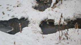 Insenatura nell'acqua corrente di inverno della natura di legni, piccolo fiume del paesaggio nella neve Fotografia Stock