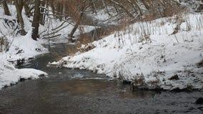 Insenatura nell'acqua corrente di inverno della natura di legni, piccolo fiume nel paesaggio della neve Fotografia Stock