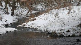 Insenatura nell'acqua corrente di inverno della natura di legni, piccolo fiume nel paesaggio della neve Fotografia Stock Libera da Diritti