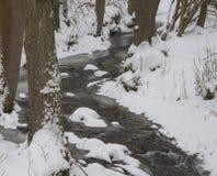 Insenatura parzialmente congelata innevata della corrente dell'acqua della foresta con gli alberi Fotografia Stock