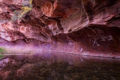 Insenatura Sedona 2 della quercia della parete di canyon fotografie stock