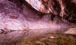 Insenatura Sedona 2 della quercia della parete di canyon immagine stock