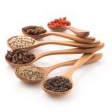 Inserção que picante da erva uma colher de madeira arranjou para preparar o alimento em um w Imagem de Stock