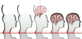 Inserendo i cervelli in teste, concetto di intelligenza Fotografie Stock