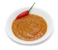 Inserimento rosso del curry Fotografie Stock