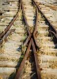 Inserisca la vecchia ferrovia a scartamento ridotto fotografie stock