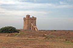 The inserraglio tower. The saracenic tower inserraglio at porto selvaggio in italy Stock Image