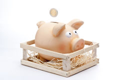Insert Coin in Piggy Bank stock photography