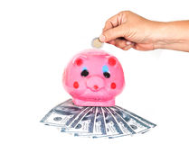 Inserting a coin into a piggy Stock Images