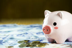 Inserting a coin into a piggy bank Royalty Free Stock Images