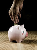 Inserting a coin into a piggy bank Stock Photography