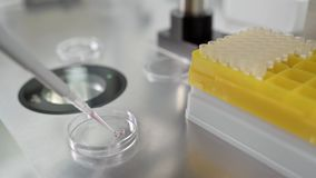 Process of in vitro fertilization in laboratory. Inserting drops of material into the IVF dish during the in vitro fertilization process in the lab. Closeup stock video footage