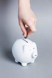 Insertion d'une pièce de monnaie dans le porc Image libre de droits