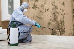 Inseticida de pulverização do trabalhador do controlo de pragas na parede fotos de stock royalty free
